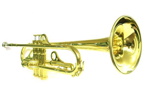 Eine große Auswahl an Blasinstrumenten